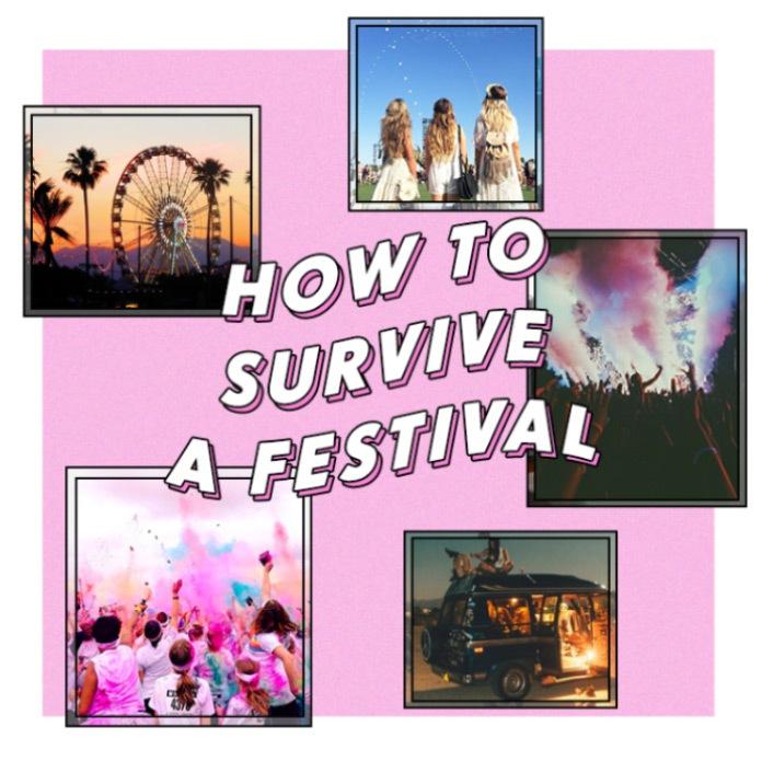 Festival Blog One